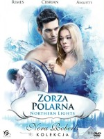 Zorza polarna / Northern Lights plakat